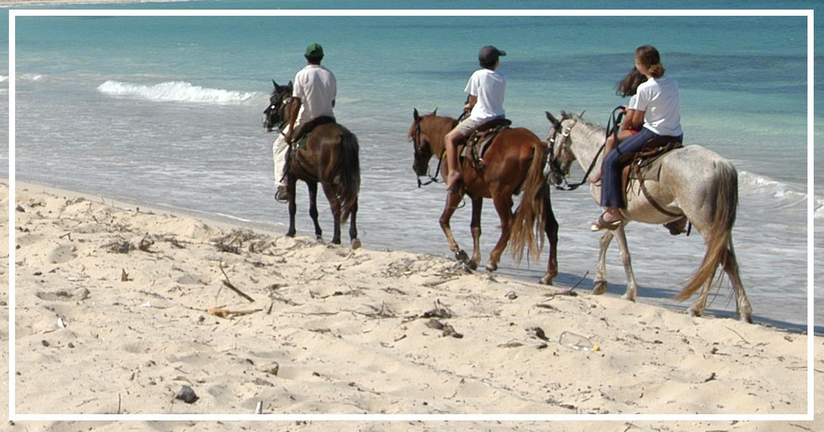 balade à cheval activités Pinarello en Corse du Sud